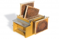 Photographic kit - frames for teaching hive - 6 brood frames, 5 super frames